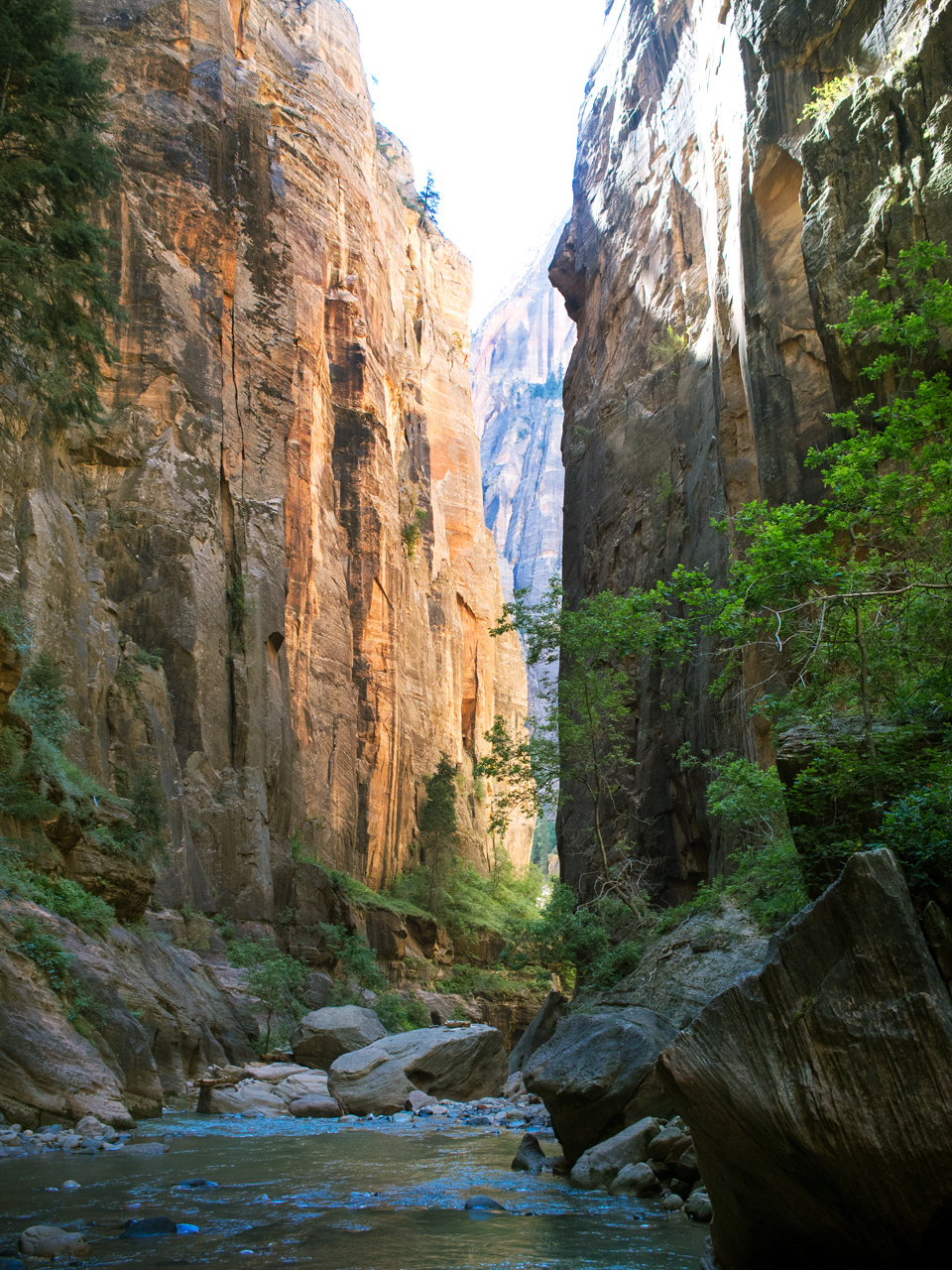 Zion Narrows - Utah Hike